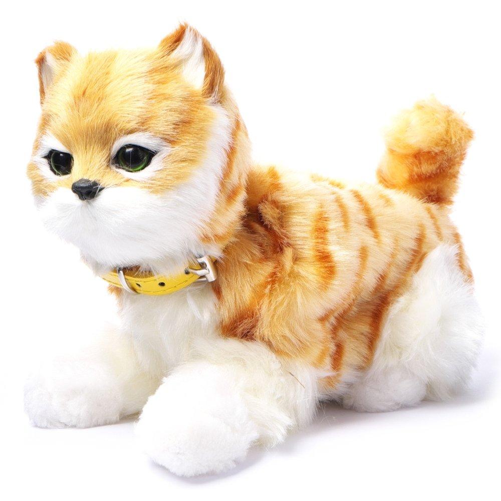 Interaktywny Kot Reaguje Na Ruch Kotek Miauczy Rudy Pręgi 1800231475